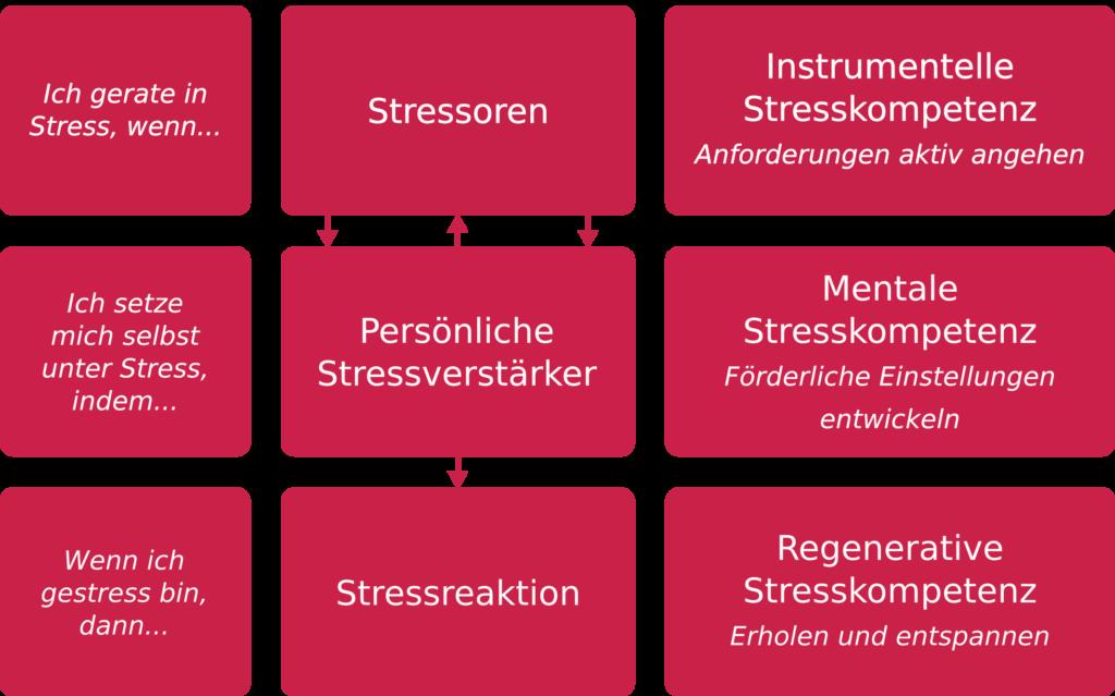 Die 3 Säulen der Stressbewältigung nach kaluza