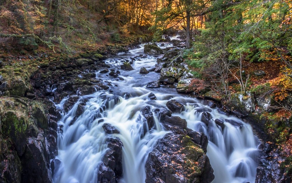 Salutogenese Analogie mach Aaron Antonovsky: Der Fluss des Lebens