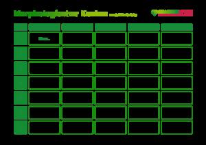 Morphologischer Kasten PDF Vorlage Vorschaubild