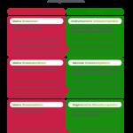 Stressbewältigung mit dem 3-Säulen-Modell nach Kaluza PDF Vorlage Vorschaubild